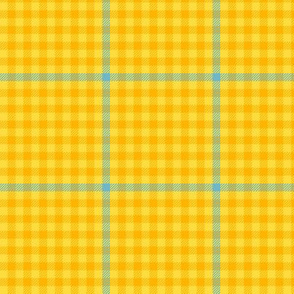 tartan check - gold and aqua