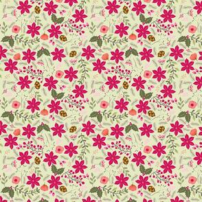Poinsettia_flower_fond_vert_M