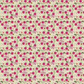 Poinsettia_flower_fond_vert_S