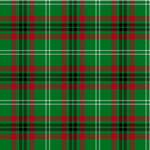 Arkansas official tartan