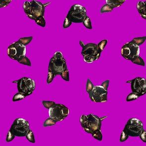 Carbon in Violet