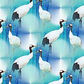 japanese cranes on blue