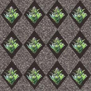 Textured Cannabis Diamond Tiles