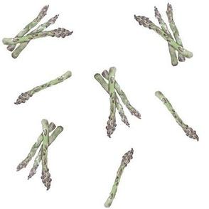 Asparagus // Kitchen // Watercolour // Autumn