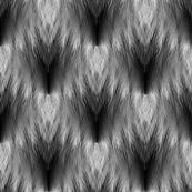 feathers b/w