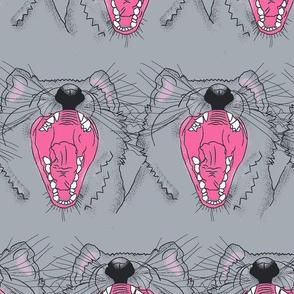 Tasmanian Devil grey#2