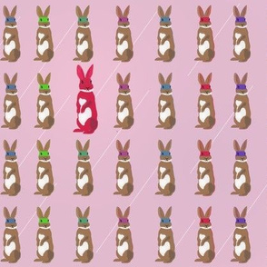 Pink masked Super Bunny Rabbit