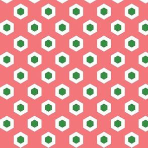 Holiday Hexies Pink & Green
