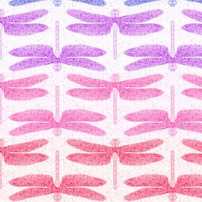 dragonfly shimmer stripe horizontal