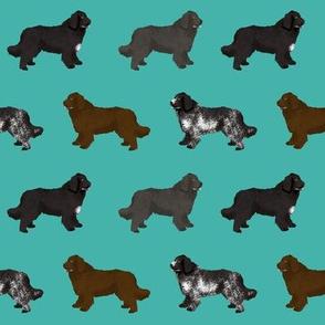 newfoundlands dog fabric cute dogs design newfoundland dog black and landseer dogs