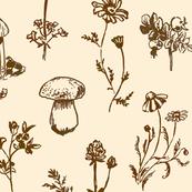 Field Guide - Brown