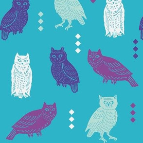 owltastic in turquoise
