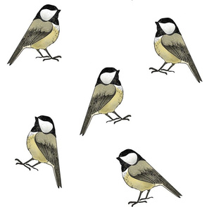 Chickadees - Larger Scale