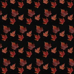Maple Leaf Triangulation