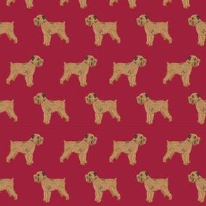 brussels griffon cute dog best dog fabric maroon pet dog fabric