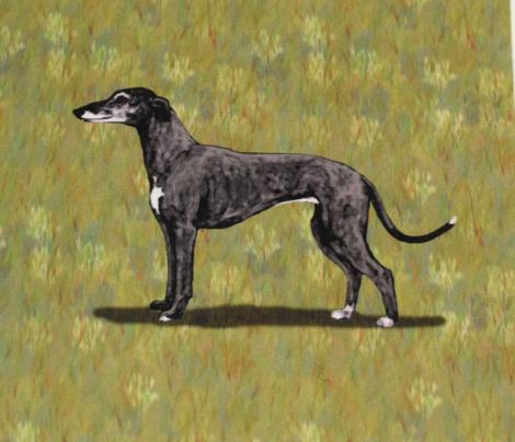 Blue Greyhound for Pillow