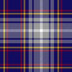 Nevada official tartan - 6""