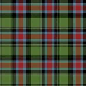 Georgia official tartan - weathered