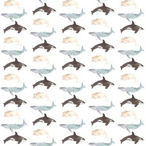 whales mini