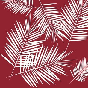 Palm leaves - white on ruby red tripopical tree Palm tree || by sunny afternoon