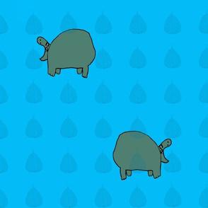 Hippo Blues