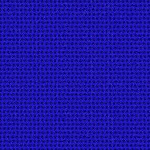 Black Snail on Moonshine Blue