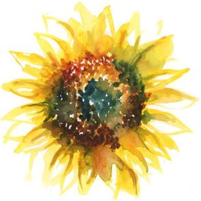 Becca's Sunflower