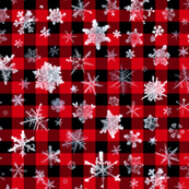 "snowflakes on 1/2"" buffalo check"