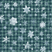 snowflakes on dark ski gingham