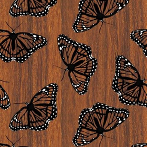 Viceroy Butterflies Camouflaged on Teak