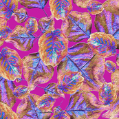 Flaming Pear Leaves Pink