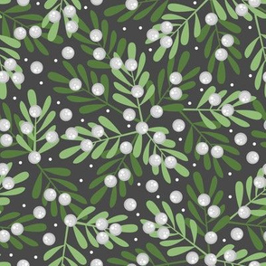 Mistletoe and Snow
