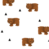 Sleepy Bears + Triangles