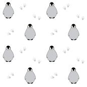 Penguins on white