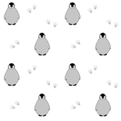 Penguins on white
