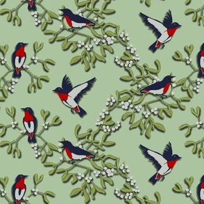 Mistletoe is for the Birds