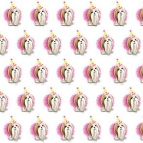 Shih Tzu Birthday Girl S
