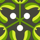 mistletoe 3m : nature hiking