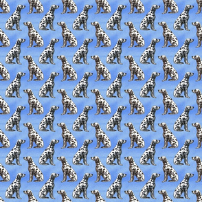 Sitting Dalmatians - small blue