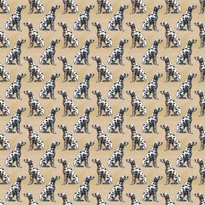Sitting Dalmatians - small tan