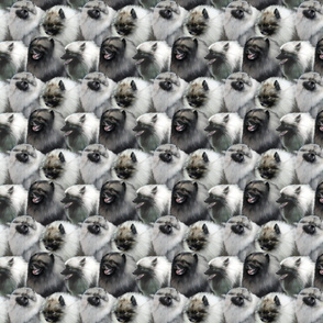 Keeshond faces - small