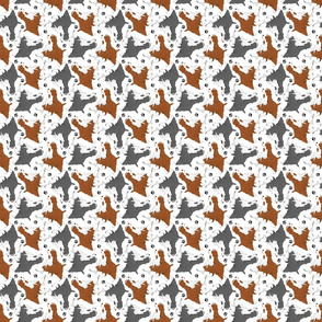 Trotting Springer Spaniels and paws - tiny white