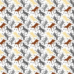 Trotting Mudis and paw prints - tiny white