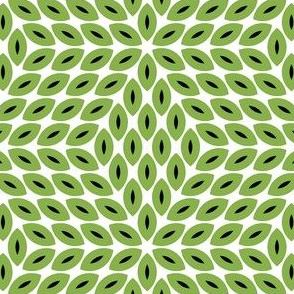 R6lens 4o : kiwi
