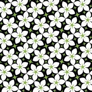 S43 floral : jasmine