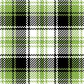 tartan : sewing green