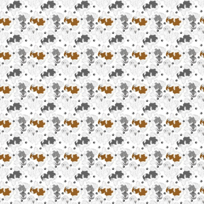 Trotting Havanese and paw prints - tiny white