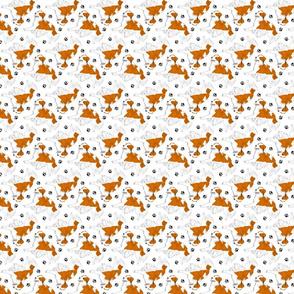 Trotting Kooikerhondje and paw prints - tiny white