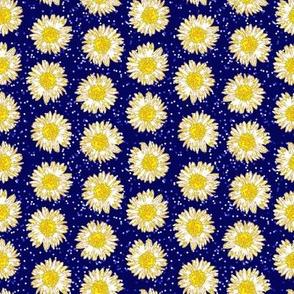 daisy sprinkle