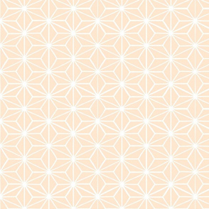 Star Grid Mirror Apricot